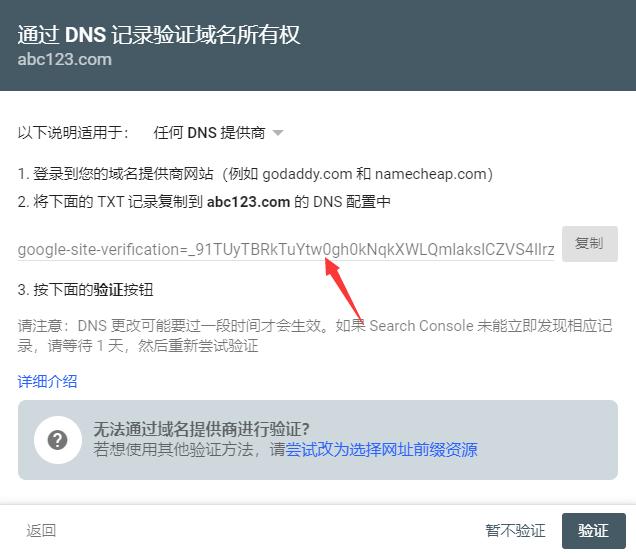 DNS 记录验证域名所有权