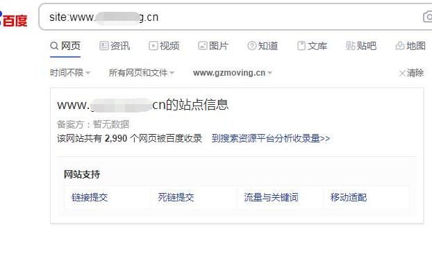 网站SEO诊断案例:site网址为什么内容都不展示呢